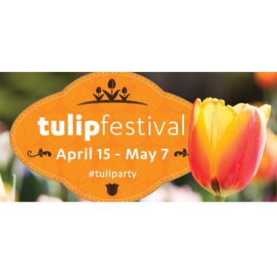 12th Annual Tulip Festival