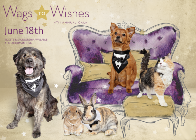 4th Annual Wags to Wishes Gala