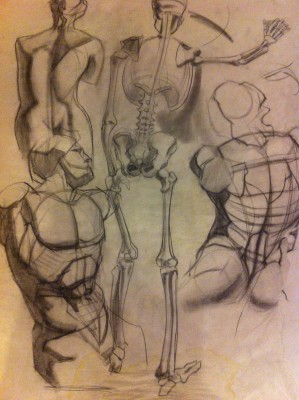 Foundational Drawing for Adults