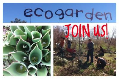 Spring EcoGarden Clean-up