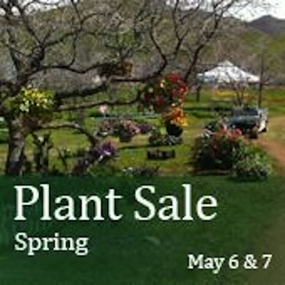 37th Annual Spring Plant Sale