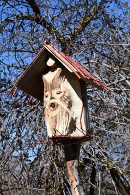 Birdhouse Competition and Exhibit