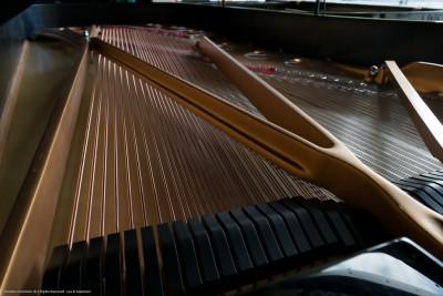 Johansen Piano Quartet: Classical Violin, Viola, Cello and Piano