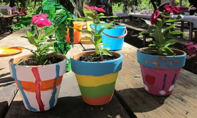 Painted Pots and Plants
