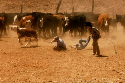 Tri-Valley Jr. Rodeo