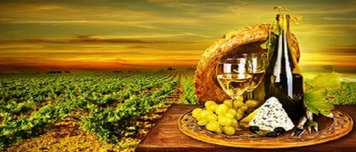 Wine and Cheeses of Spain
