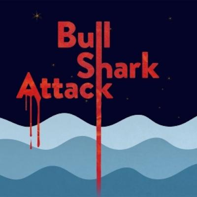 Bull Shark Attack by Troy Deutsch