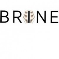 primary-BRINE--Intersections-1470907312