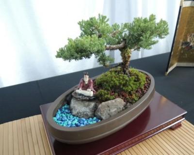 Bonsai Show