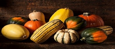 Bored With Your Gourd?