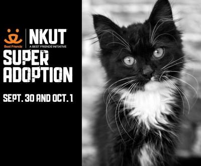 NKUT Super Adoption