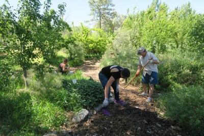 October EcoGarden Clean-Up