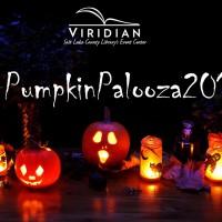 primary-Pumpkinpalooza-2016-1473285765