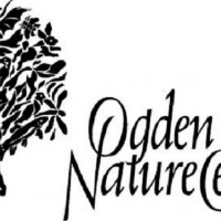 Wasatch Audubon Bird Walk