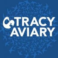 tracyaviary_400x400