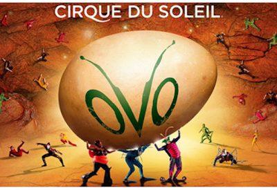 cirque_ovo