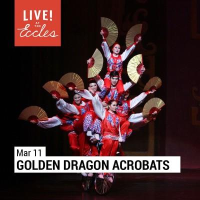 Golden Dragon Acrobats