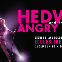 primary-Hedwig---the-Angry-Inch-1475684939