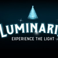 Luminaria: Experience the Light