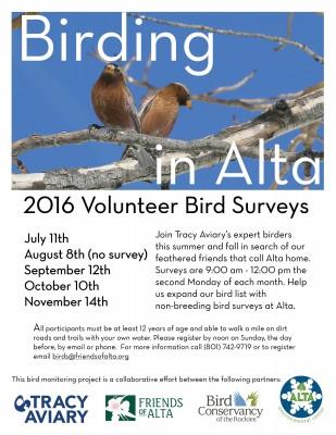 October Bird Survey