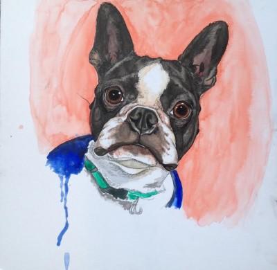Painting Pet Portraits