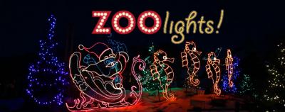 ZooLights!