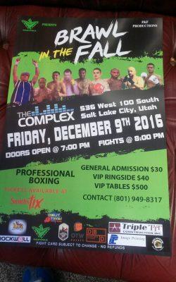 Brawl in the Fall (Pro Boxing)