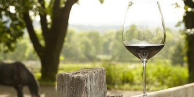 Champagne and Exceptional Sparkling Wines Around the World