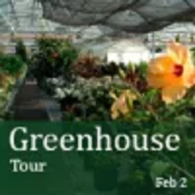Greenhouse Tour