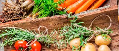 Viva la Vegetarian