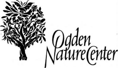 Wild Wednesday: Nature's Hoarders