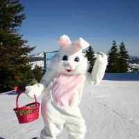 Ride with Easter Bunny & Easter Egg Hunt 2020 ...