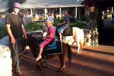 primary-Petting-Zoo-and-Pony-Rides-at-The-Farm-1483061870