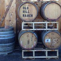 primary-Wine-Series--Red-Wine-101-1482161103