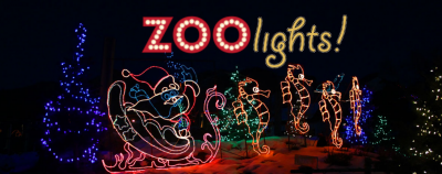 ZooLights! and Early New Year's Eve Countdown!