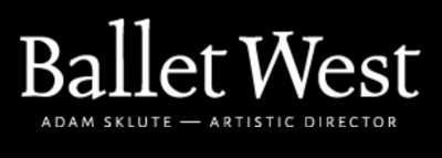 Special Events and Benefits Coordinator - Ballet W...