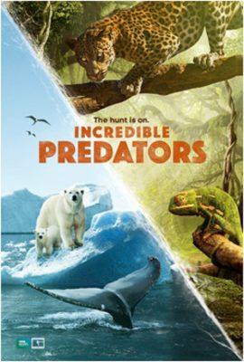 Incredible Predators 3D