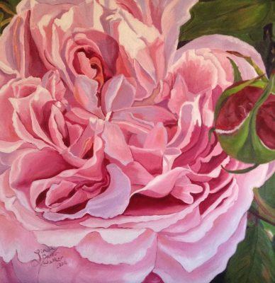 Linda Dalton Walker - Rose Paintings in Oil