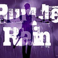 primary-Shut-Up-and-Dance--Purple-Rain-1486374287