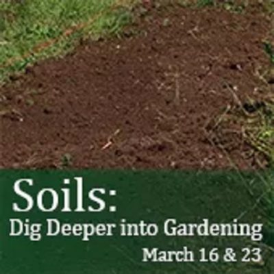 Soils: Dig Deeper Into Gardening