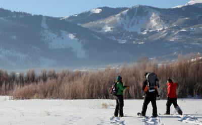 Winter Wetland Excursion