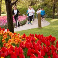 2018 Tulip Festival 5k and Kid's Run