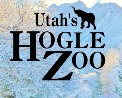 Hogle Zoo Paint Night - Zebra
