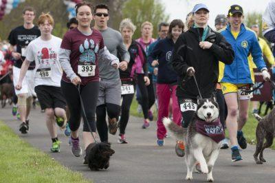3rd Annual Yuba Dog Run
