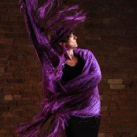 2nd Annual Flamenco Fiesta!