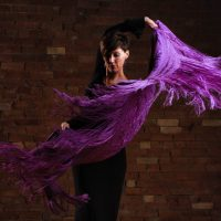 primary-Flamenco-Workshop-1489955368