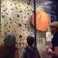 Natural History Museum Art Camp