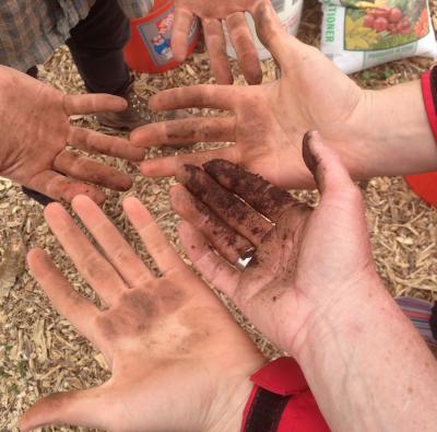 primary-Soil-Biology-with-James-Loomis-Workshop-1489699409