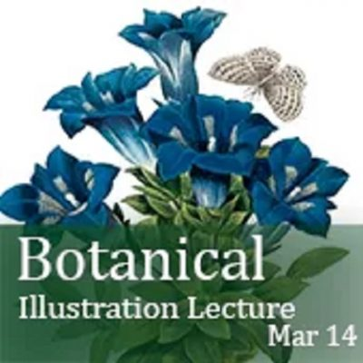 The Tradition Continues - A Short History of Botanical Art