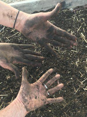 Organic Fertilizers and Soil Amendments